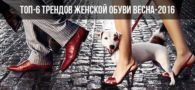 1b15a01d4 Интернет-магазин ditto.ua спешит поделиться с вами секретами стильной обуви  сезона весна-2016!